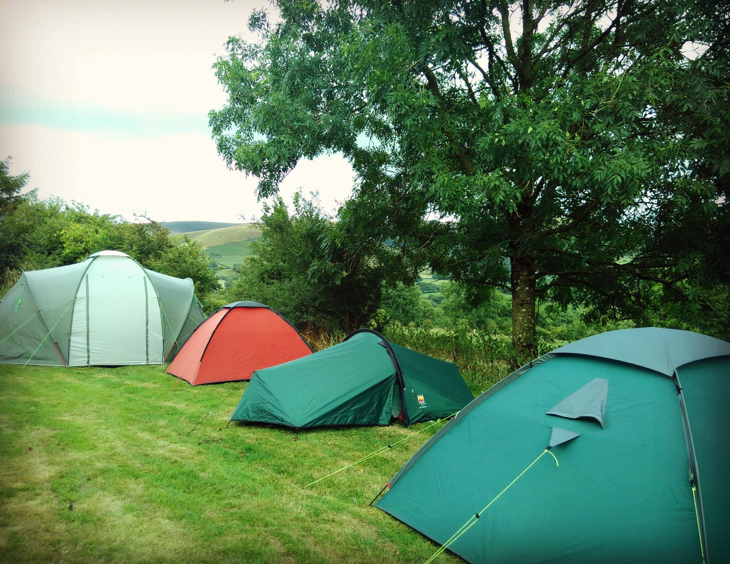 Four tents in a line, in the middle of a green field with trees in the background